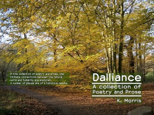 Dalliance 64 page cover (small)