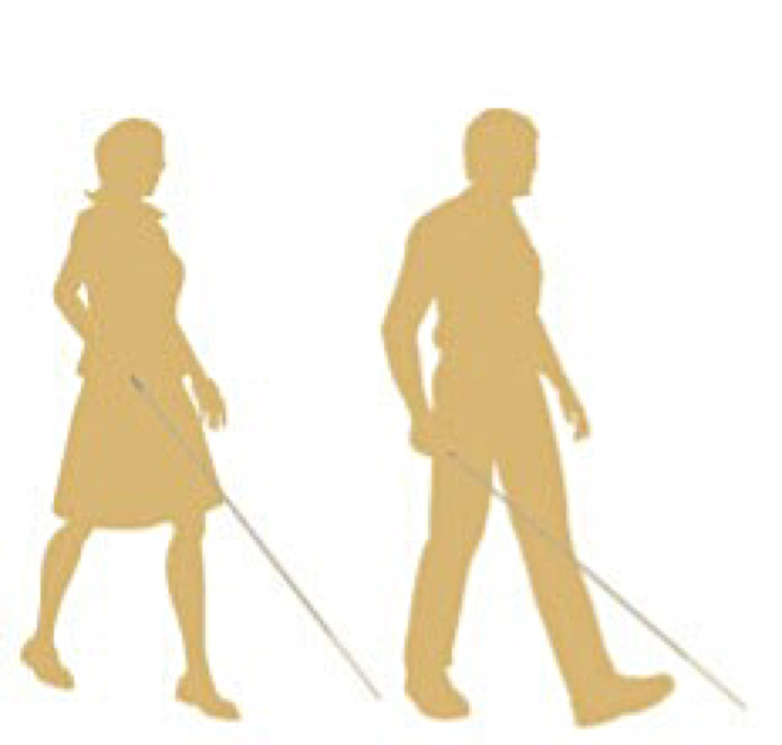 visually impaired persons