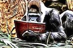 Chris-the-Story-Reading-Ape